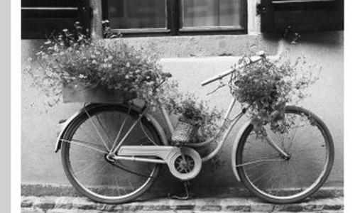 Milano e la Giornata Nazionale della Bicletta – eventi ecofree