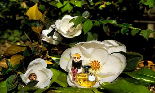 Vero Kern, dai giardini di Tivoli all'Hotel Sheraton di Milano