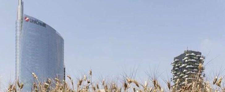 Festa del raccolto 2015 tra i grattacieli di Porta Nuova? Il campo di grano Wheatfield Milano è pronto per la mietitura, ecco quando e cosa fare!
