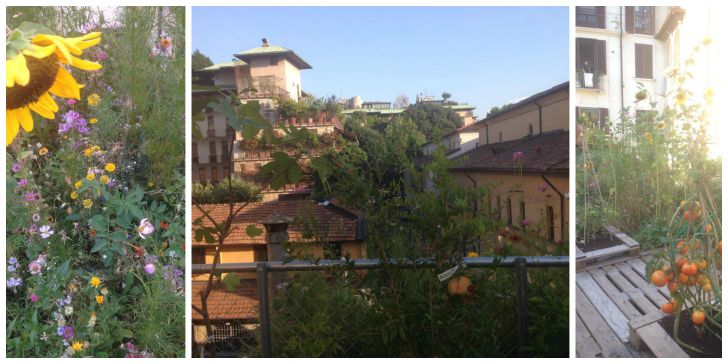 #ortofraicortili - Piuarch - via Palermo 5