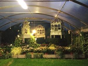 A due passi dalle Colonne di San Lorenzo si nasconde Vivaio Riva. Tra specie di fiori e piante questa sera con #Expop abbiamo parlato di come rendere Milano ancora più bella — presso Vivaio.