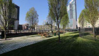 A Milano nasce la Biblioteca degli alberi: ecco dove sorgerà