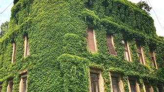 Villa Mozart a Milano: un gioiello svelato e 15 fotografie solo per due giorni